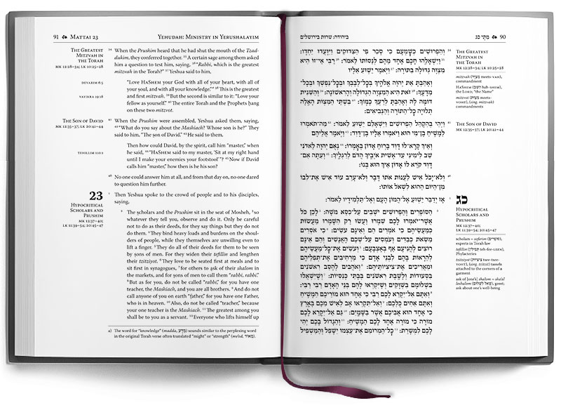 The Delitzsch Hebrew Gospels - Standard Edition